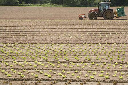 Sejm przeciw podwyżce zwrotu akcyzy zawartej w cenie paliwa rolniczego