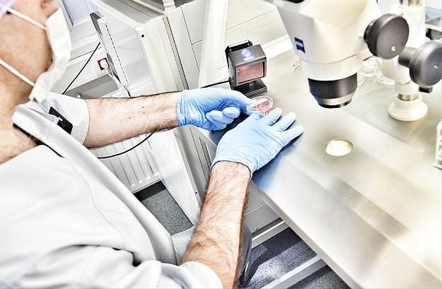 Zarzuty rzecznika odpowiedzialności zawodowej za pomyłkę przy in vitro w Policach