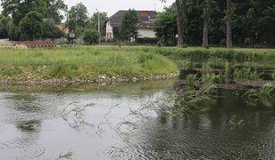 Białystok. Zwłoki nieznanego mężczyzny znaleziono w Stawach Marczukowskich