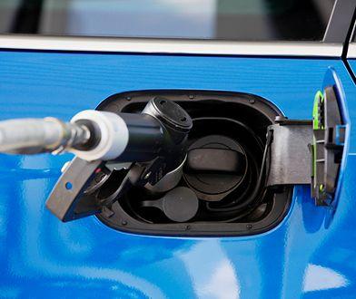 Technologia sprężonego gazu ziemnego wypłynęła nieco ponad 10 lat temu. Dziś CNG stosuje się głównie w dużych pojazdach