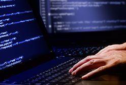 Atak hakerski w Netii. Wykradzione dane już wykorzystują inni przestępcy