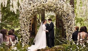 Ślub w plenerze - gdzie w Warszawie? (NASZE PROPOZYCJE)