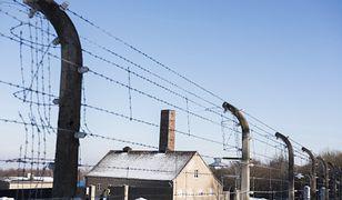 Niemcy. Skandal w Buchenwaldzie. Ludzie na sankach na terenie byłego obozu