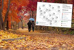 Pogoda długoterminowa na wrzesień. Przed nami złota jesień? IMGW tłumaczy