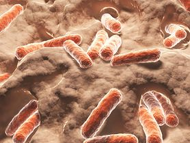 Mutująca bakteria cholery