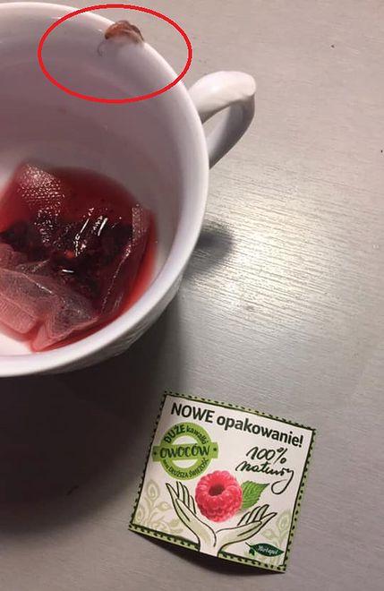 Robak wypełzł z torebki herbaty