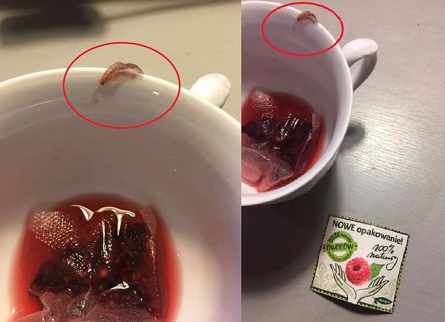 """Niespodziewany """"gość"""" w torebce herbaty. Producent komentuje"""