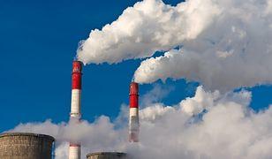W Gdańsku ma powstać wielki kompleks petrochemiczny
