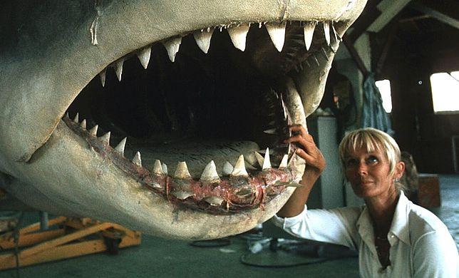 """Tańcząca z rekinami"" - historię Valerie Taylor można oglądać na Millenium Docs Against Gravity"