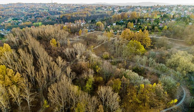 Budowa w Wieliczce olbrzymiego parku na Stoku Pod Baranem zmierza do końca (wieliczkacity.pl)