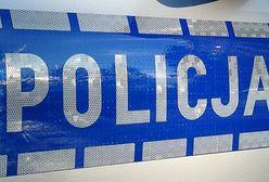 Śląskie. Koronawirus. Interwencja policji w pizzerii w Poraju. Jej właściciele się nie przelękli