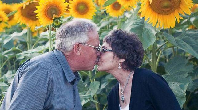 Zasiał dla chorej na raka żony 400 akrów słoneczników