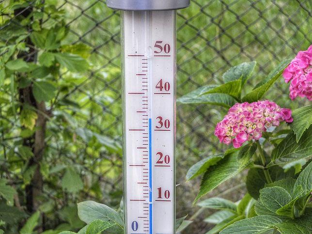 Domowe sposoby na ochłodzenie mieszkania