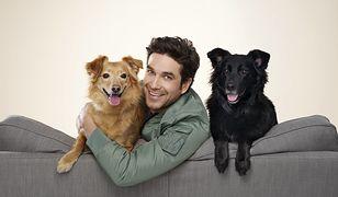 Marcin Dorociński pokazał w spocie swoje psy. Aktor zaadoptował je ze schroniska