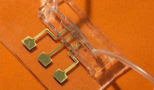 Ten chip wykryje przeciwciała COVID-19 w kilka sekund. Naukowcy drukują go w 3D