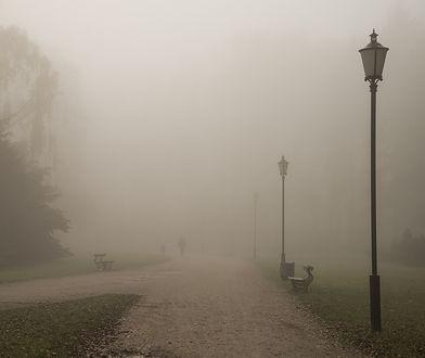 Pogoda. Gęsta mgła na terenie większości kraju. IMGW alarmuje