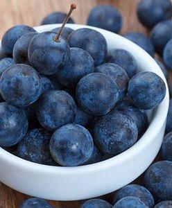 Tarnina: właściwości lecznicze owoców tarniny