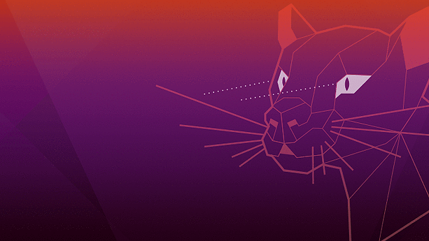 """Ubuntu 20.04 """"Focal Fossa"""" już jest! Oto, co przygotowali twórcy"""