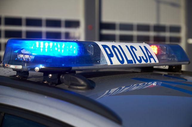 """15-latek zatrzymany. Jest podejrzany o oszustwa na """"policjanta"""""""