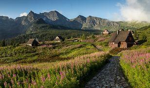 W tym sezonie ciężko liczyć na puste szlaki w Tatrach