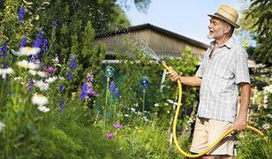 Tusk: jest szansa na kompromisowy projekt o ogrodach działkowych