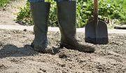 Kontrowersje wokół ustawy o ogródkach działkowych