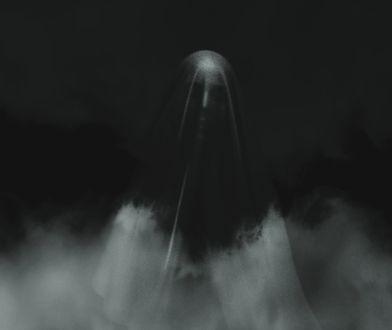 """Tesla dostrzegła """"ducha"""" w pobliżu cmentarza. Kierowca był przerażony [Wideo]"""