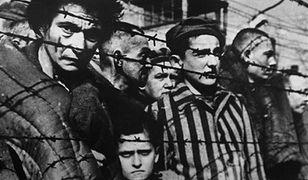 Skandal we Francji. Na uniwersytecie w Strasburgu znaleziono szczątki 86 zagazowanych Żydów