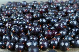 Sok z czarnej porzeczki – wartości odżywcze. Jak przygotować sok?