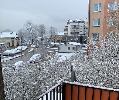 Pogoda. Śnieg i przymrozki. Ostrzeżenia IMGW
