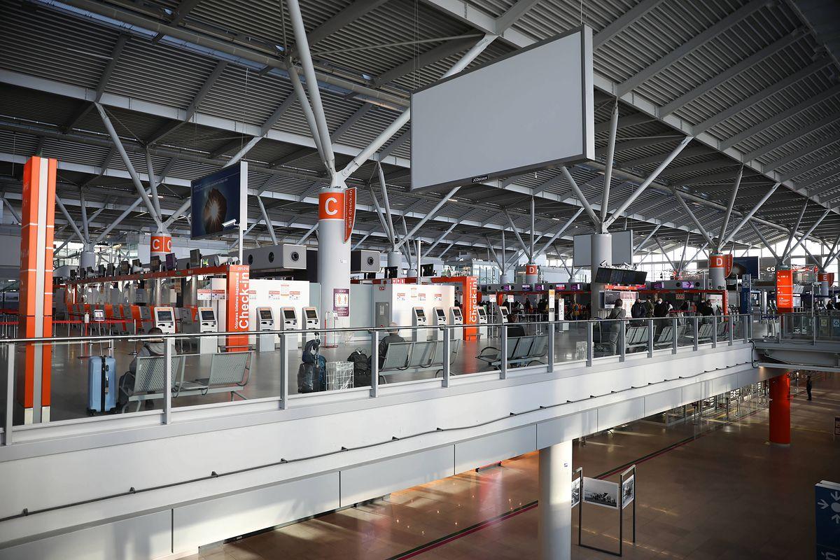 Warszawa. Na Lotnisku Chopina w bagażu podróżnego znaleziono fragmenty rafy koralowej