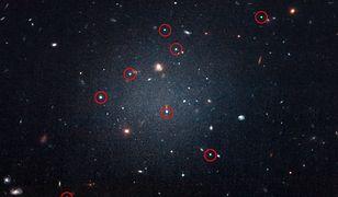 Galaktyka NGC 1052-DF2 składa się z odległych od siebie, ale bardzo skupionych gromad gwiazd