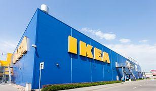 IKEA chce być zieloną firmą