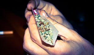 40 proc. kierowców czuje się dobrze za kierownicą po marihuanie