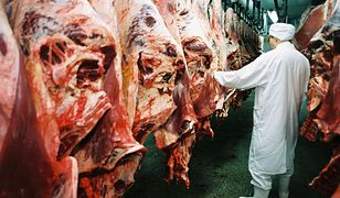 Polskie mięso zastępowało argentyńskie steki