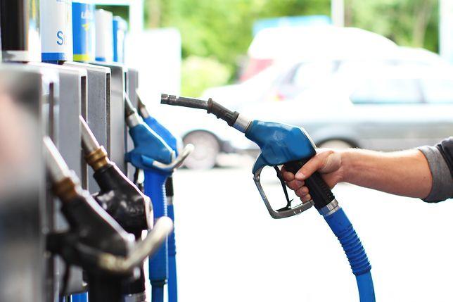 PiS planuje podwyżkę akcyzy na paliwo. Internauci powiedzieli, co o tym myślą