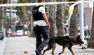 Policja wciąż szuka ostatniego z członków siatki odpowiedzialnej za zamachy w Barcelonie