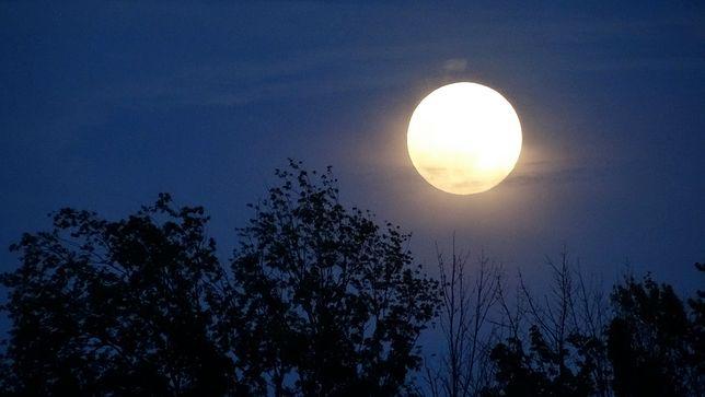 Superksiężyc już dzisiaj. Przed nami jedna z najjaśniejszych nocy w roku [Wideo]