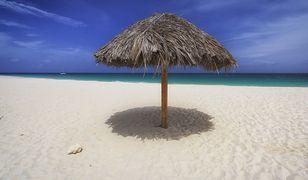 Aruba – raj dla plażowiczów. Co warto wiedzieć, planując wakacje na Arubie?