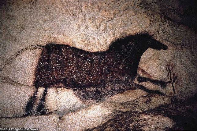 Polak odkrył malowidła jak z słynnej jaskini Lascaux