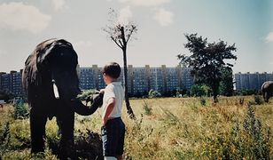 Gdańsk. Zrobił zdjęcie ze słoniem. Dziś byłoby to niemożliwe