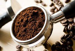 Poczuj prawdziwy zapach kawy. Wybieramy dobry młynek
