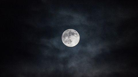 Twórcy Pale Moon zamierzają stworzyć nową przeglądarkę