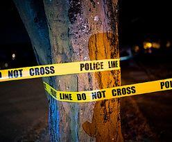 Brutalne morderstwo w Walii. Polak trafił do aresztu