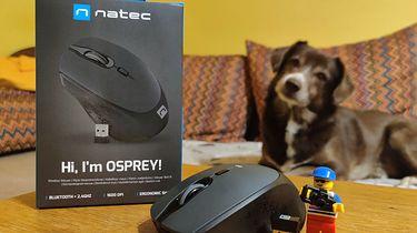 Natec Osprey - myszka bezprzewodowa dla wielbicieli minimalizmu i wielozadaniowości