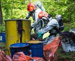 Substancja w lasach groźna dla ludzi. Horrendalna suma za wskazanie sprawcy