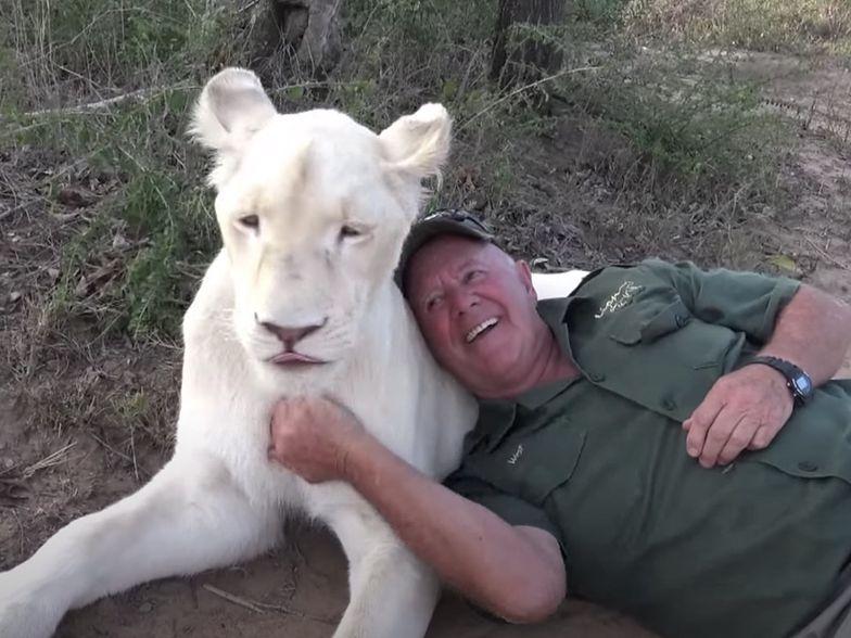 Lwy rozszarpały swojego właściciela. Wszystko na oczach jego żony
