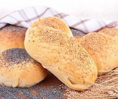 Każdy znajdzie chleb dla siebie
