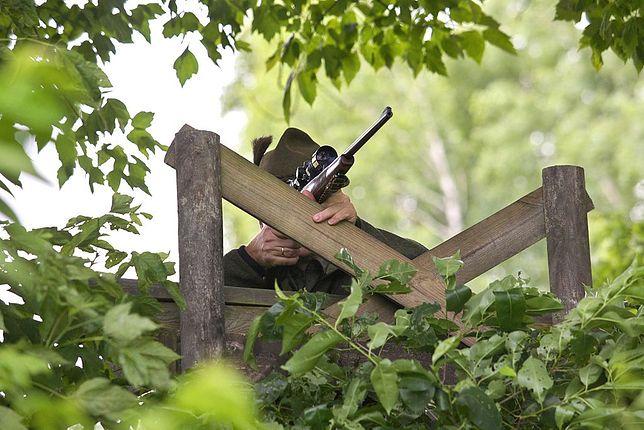 Łowiectwo obejmuje wiele zagadnień, w tym m.in. ochronę środowiska naturalnego, a także strzelectwo myśliwskie (zdjęcie poglądowe)