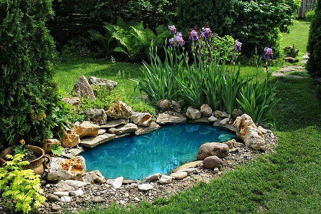 Zakładanie ogrodu krok po kroku: planowanie